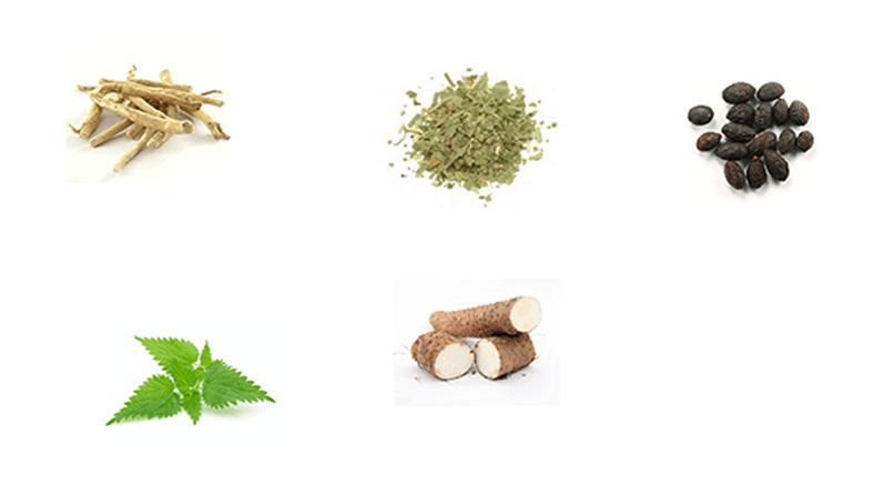 VigXeX ingredients